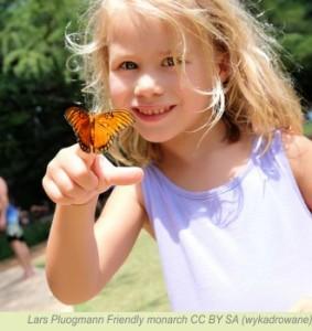 To także wspaniała atrakcja dla dzieci. Zdj. Lars Pluogmann (CC BY-SA)